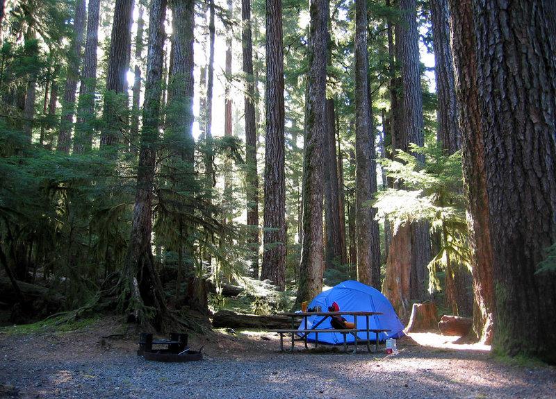 Sol Duc camping