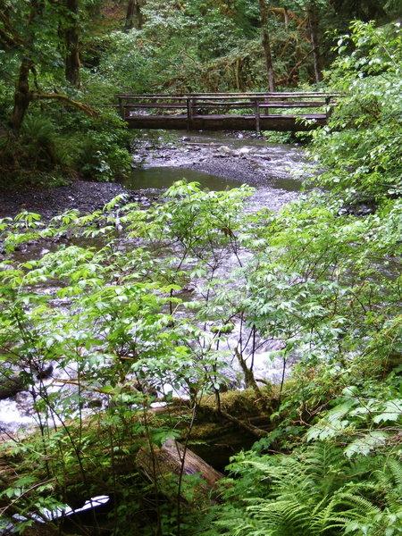 Bridge over Barnes Creek