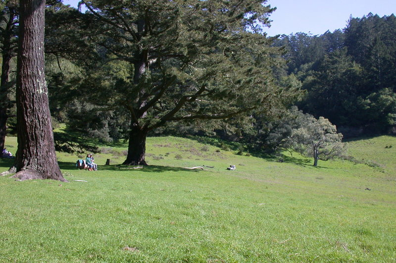 Divide Meadow