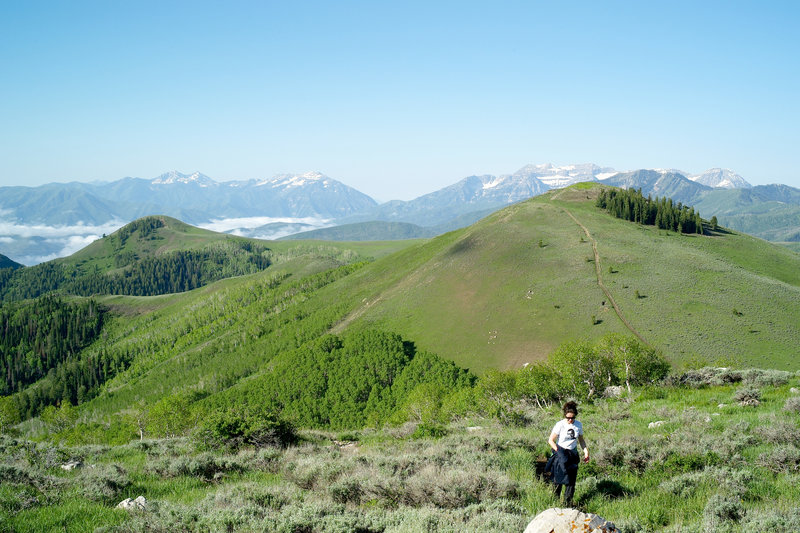 Silver Lake Trail in Park City