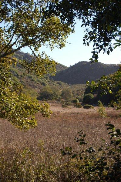 Laguana trail