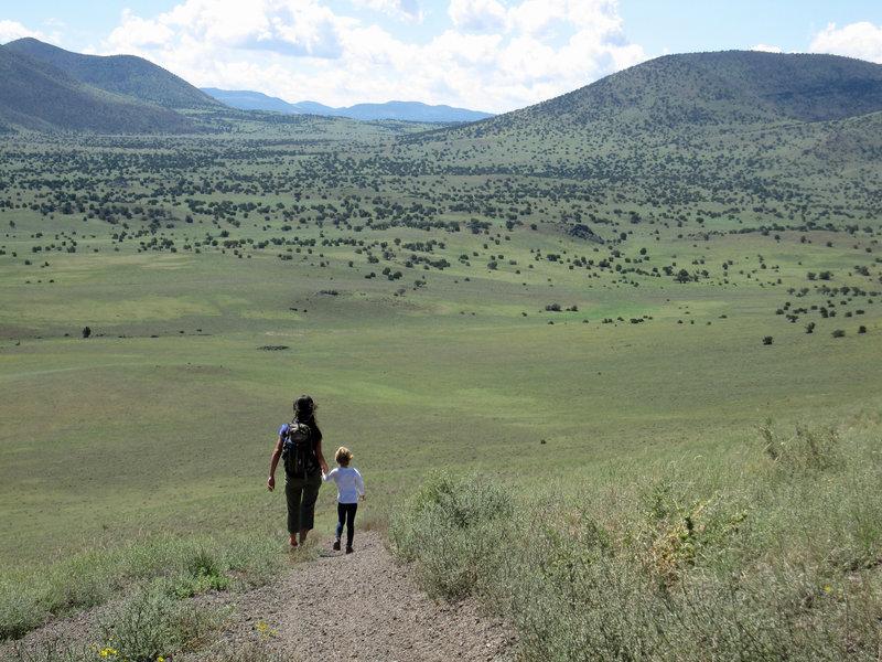 Grasslands between volcanic cones.