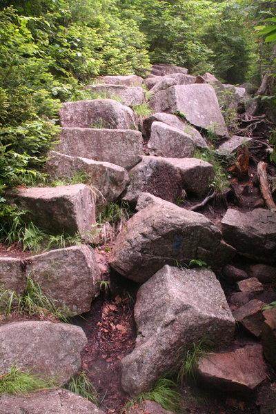 Climbing Falling Waters