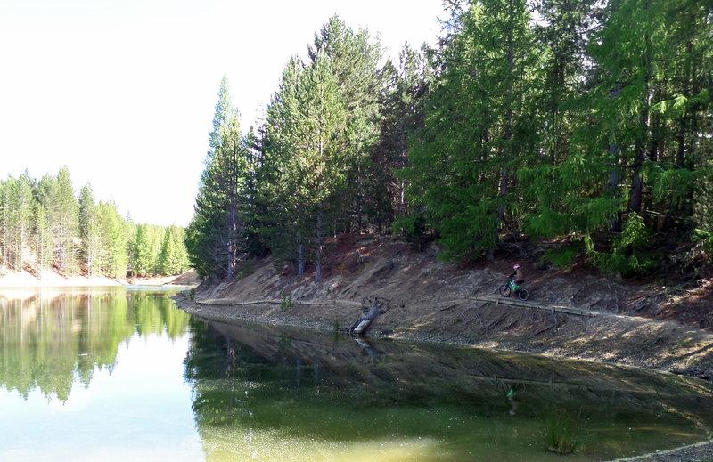 Lakeside trail at Hoffman's Dam