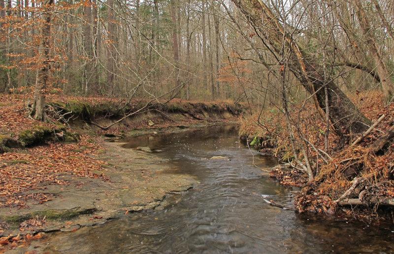 Campbell Creek.