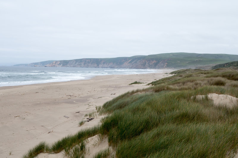 Wind on the dunes of Kehoe Beach