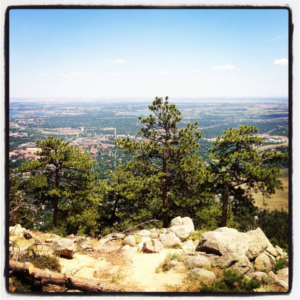 Boulder from above, on Chapman Drive
