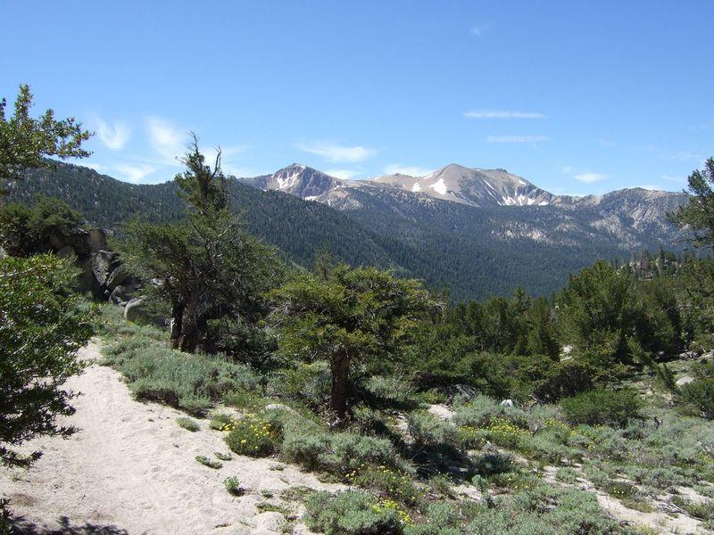 Freel Peak from Monument Pass.