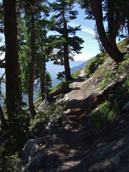 Narrow trail on a steep mountain side.