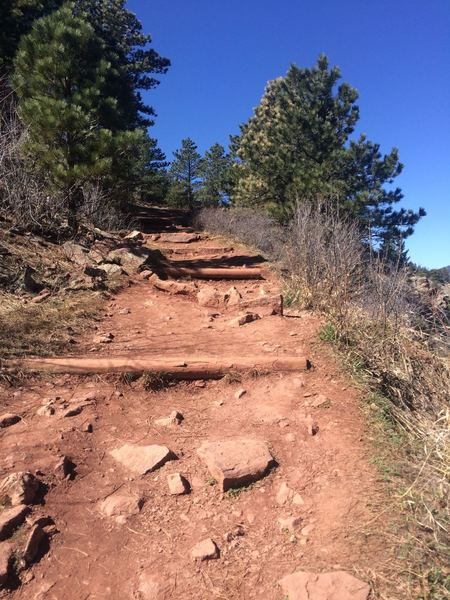 Tough section of the Viewpoint Trail