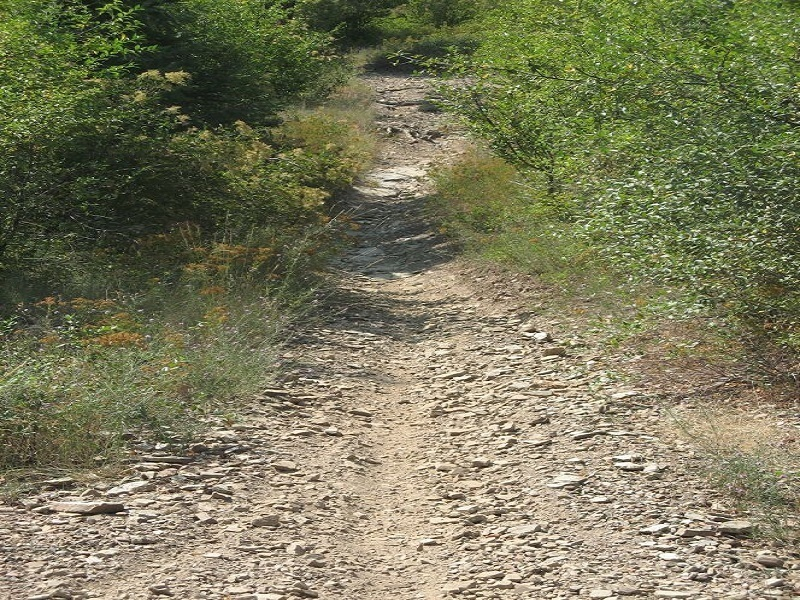 """Trail """"A"""""""