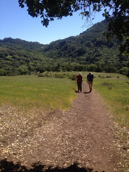 Looking back at the meadows on Lower Bald Mountain Trail