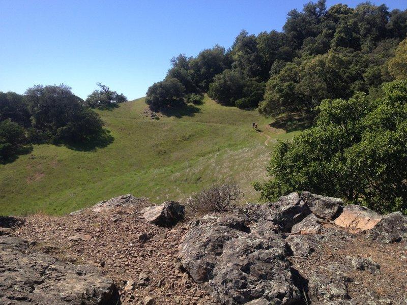 Nice views on the Vista Trail