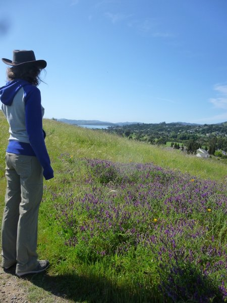 Great views from the Oak Ridge Trail