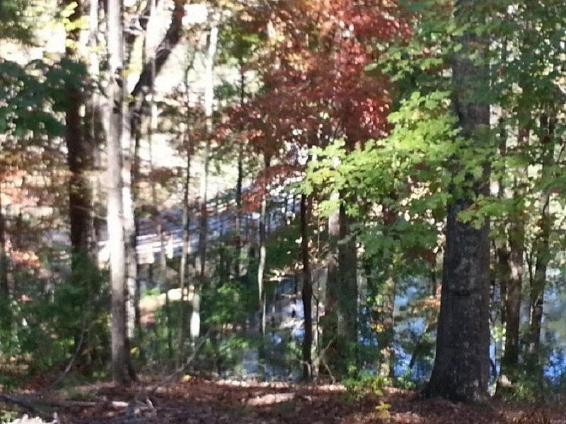 Look through the trees at the boardwalk bridge along the Panola Mtn trail.