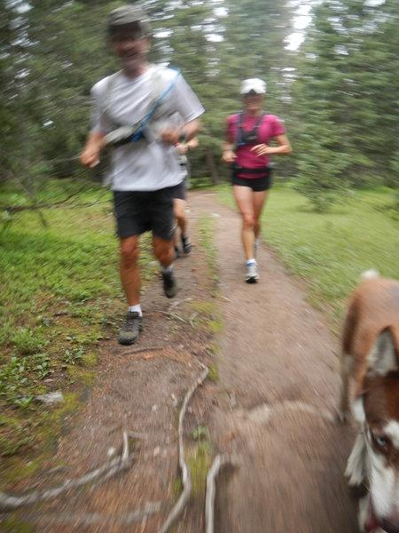 SINGLETRACK!!!  On Winsor National Recreation Trail