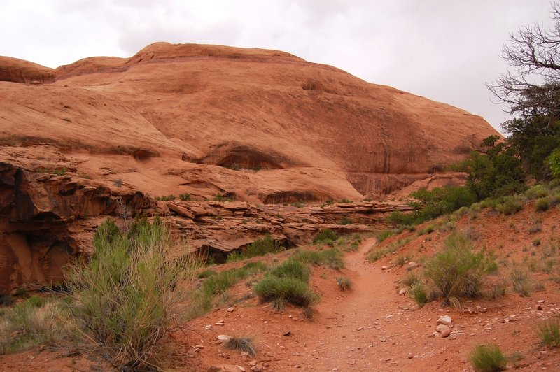 Sandy canyon singletrack trail in Grandstaff Canyon.