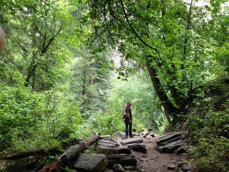 Working up the Hanging Lake Trail