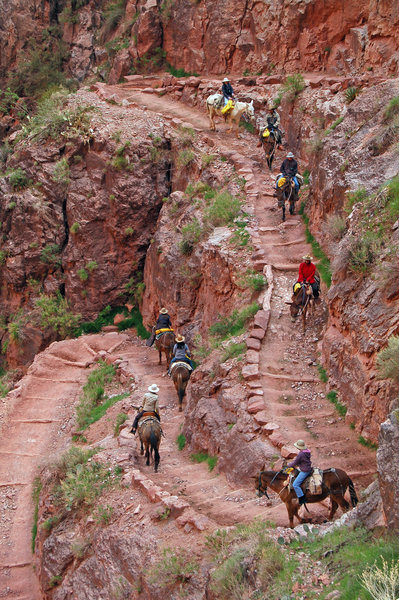 This trail is STEEP!