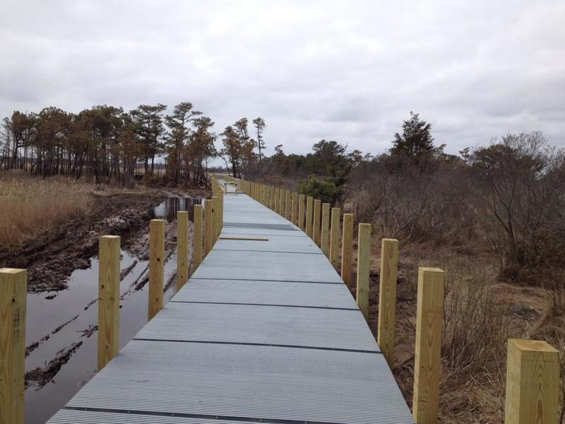 New raised walkway on Gordon's Pond Trail