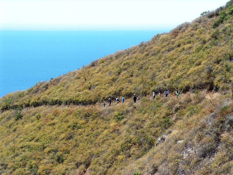 Lots of users of the Ewoldsen Trail.