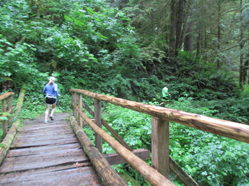 Trail runners crossing one of approximately eight bridges along the Little River Trail.