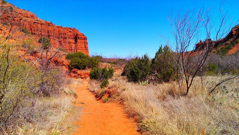 Upper Canyon Trail (trail C) east of Fern Cave