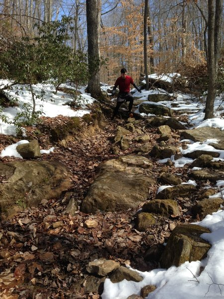 This is the worst of the technical sections on First Creek Trail. Short, but steep & rocky.