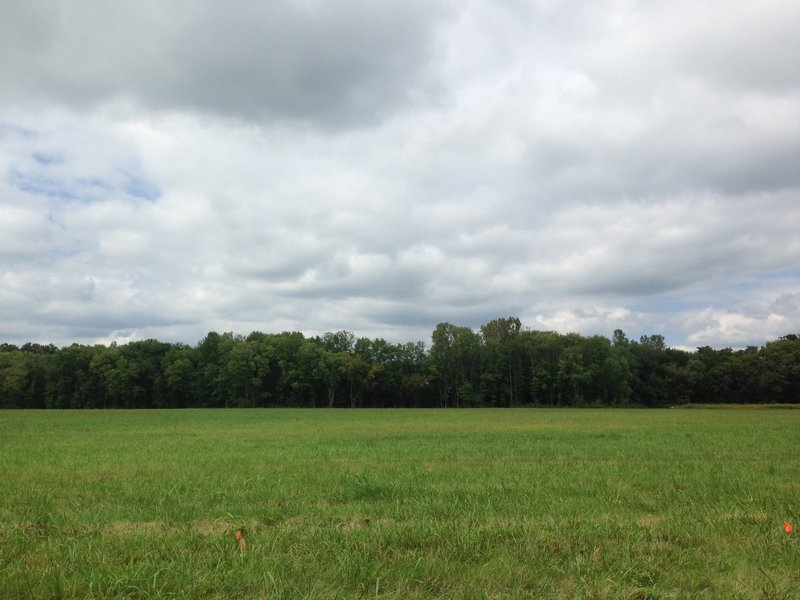 The field of Weldon Peete Park