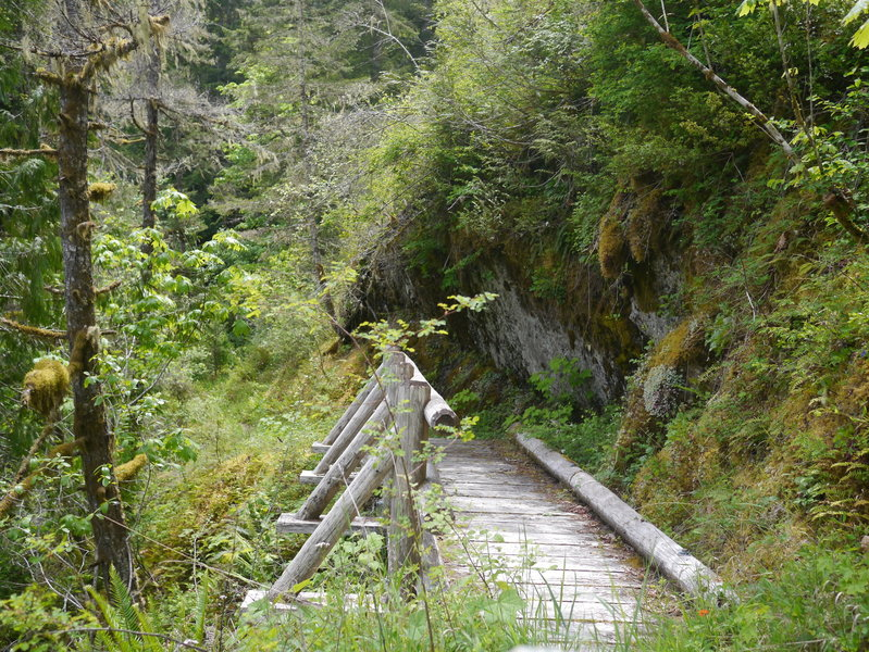 The West Elwah Trail crosses several side creeks along the way (Photo by bensonk42)