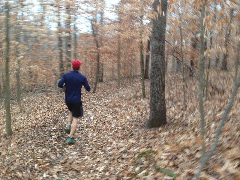 Taking on the Buffalo Creek Trail