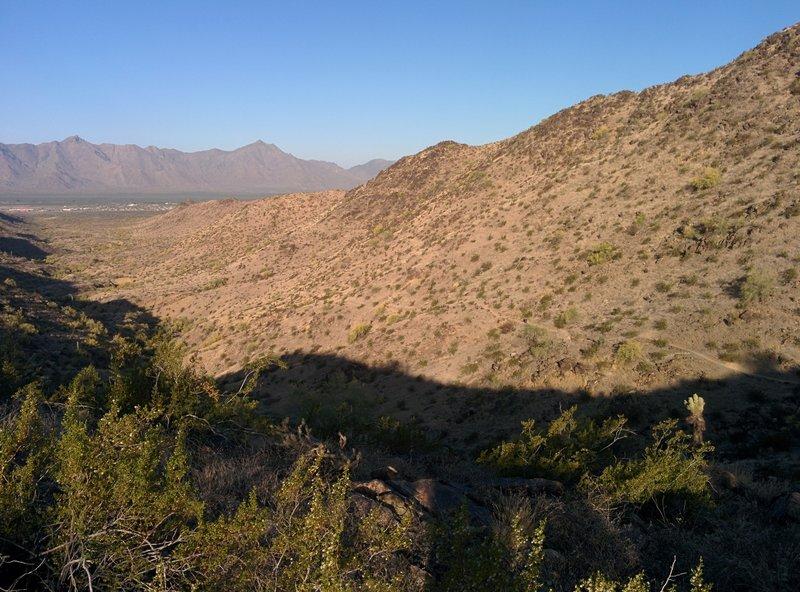View of the Sierra Estrella from the Bursera Trail