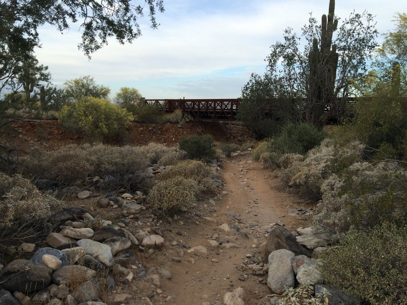 Bridge along the Desert Park Trail