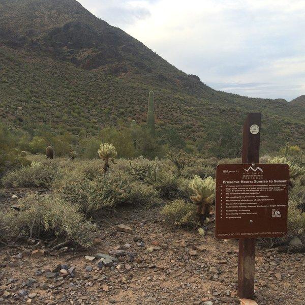 McDowell Sonoran Preserve border. From the Desert Park Trail