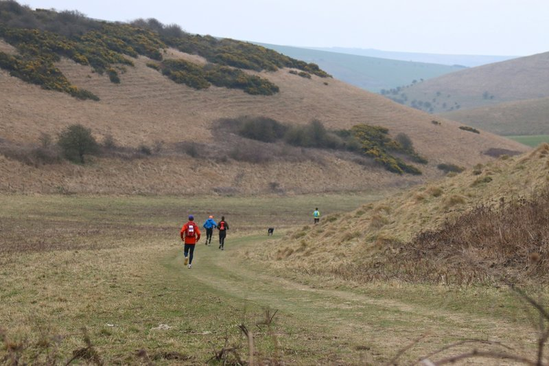 Runners in Moyleman 2015 heading further down into Castle Hill Nature Reserve