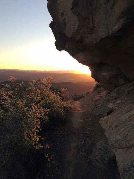 Sunrise on the climb up to the Mesa.  Suicidal Tendencies Trail
