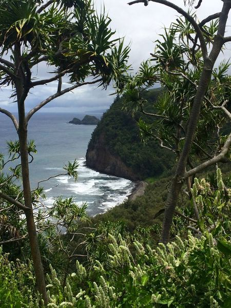 Overlook of the Pololu Valley