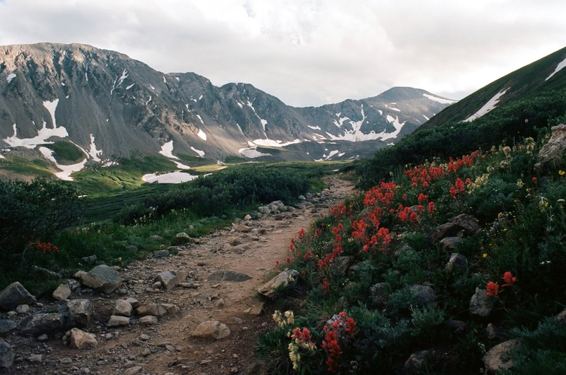 The Path - Grays Peak Trail