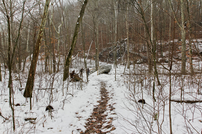 After crossing the Mill Brook - on the Mill Branch Trail