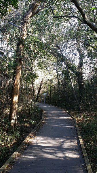 Part of the nature trail close to the park service building is decking material / boardwalk.