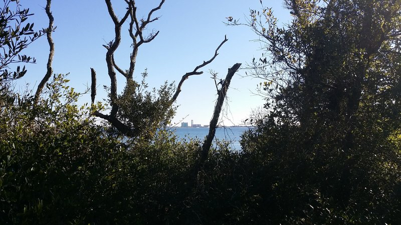 View of Pensacola Beach from the fishing trail - Naval Live Oaks