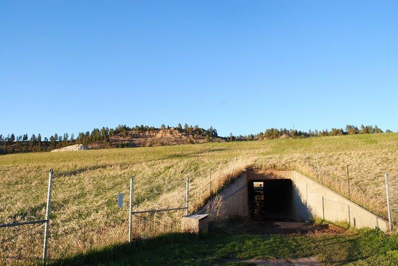 Tunnel under the interstate.