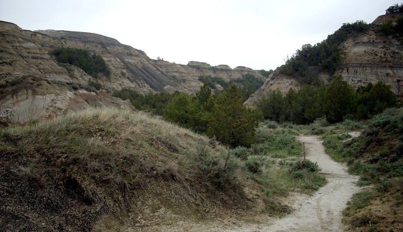Narrow Coulee