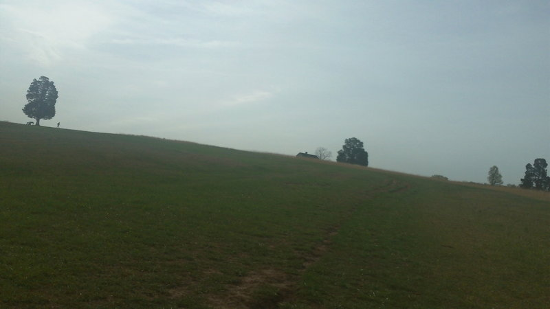Looking up hill on the Henry Hill Climb