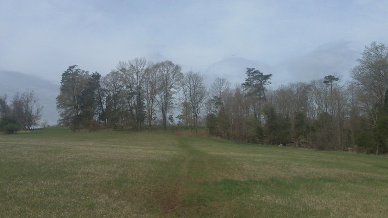 Short hill on 2nd Battle of Manassas Trail. Always kicks my bum though