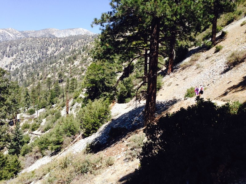 The trail rises rapidly up the mountainside off the canyon floor through this section.