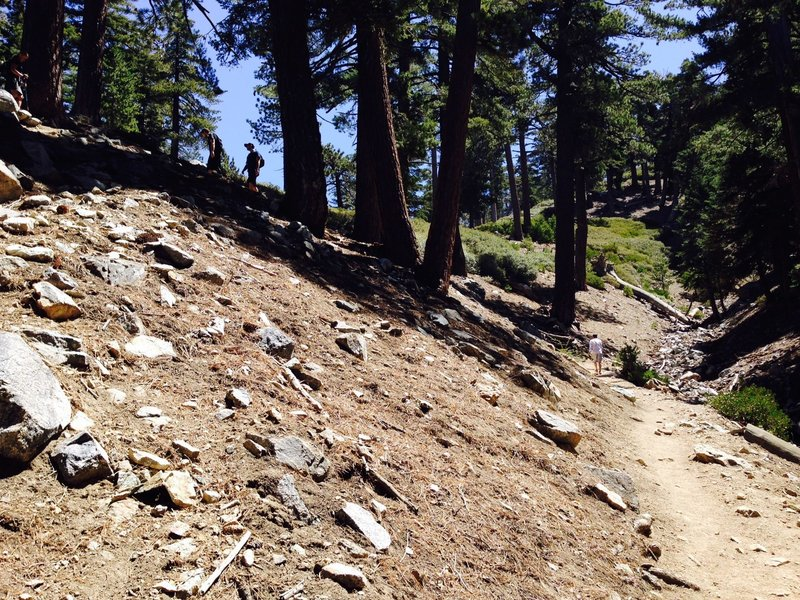 Don't cut the switchbacks!