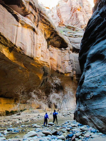A cold, quiet hike in The Narrows