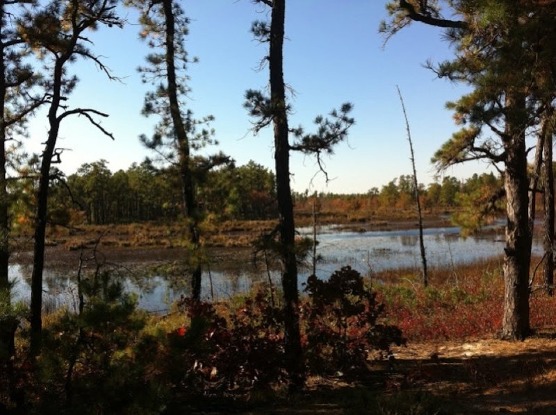 Scenic view of Beaver Pond from the Beaver Pond Quaker Bridge Trail