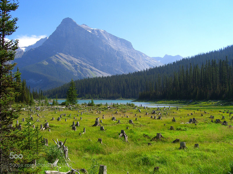 Incredible views abound at Peter Lougheed Provincial Park!
